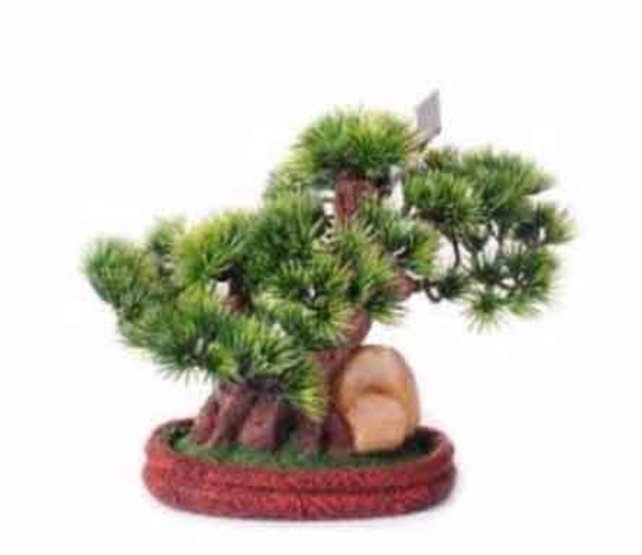 Árvore Decorativa Bonsai