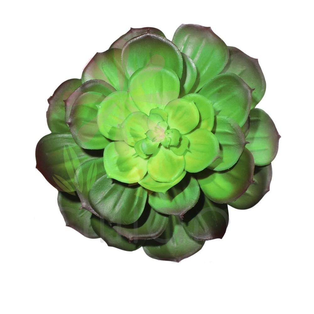 Echeveria em Silicone 12cm
