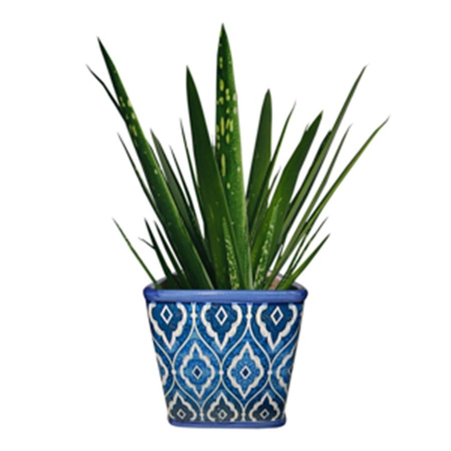Cachepot Marrocan Azul Cerâmica Quadrado P 10x11cm