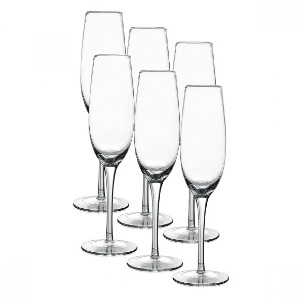 Jogo 6 Taças de Vidro Para Champagne